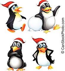 lindo, conjunto, carácter, pingüino