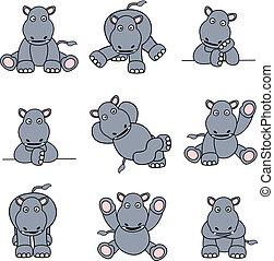 lindo, conjunto, hipopótamo