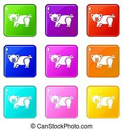 lindo, conjunto, iconos, color, colección, cerdo, 9