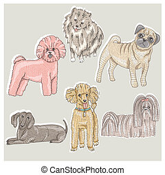 lindo, conjunto, perros