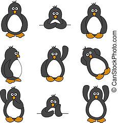 lindo, conjunto, pingüino