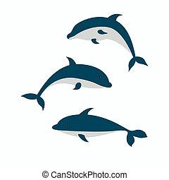 lindo, dolphins., conjunto, tres