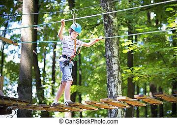 lindo, escolar, parque, soleado, actividad, montañismo, el...