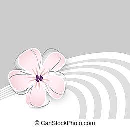 lindo, flor, plano de fondo