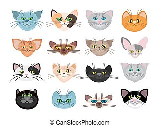 lindo, gato, vector, ilustración, caras