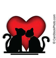 lindo, gatos, enamorado