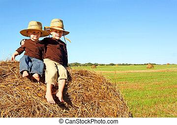 lindo, hermanos, exterior, en, granja