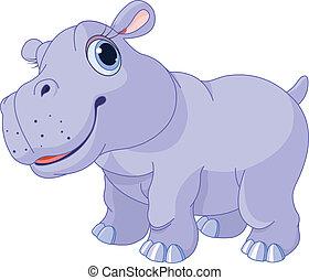 lindo, hipopótamo