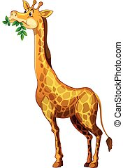 lindo, hojas, jirafa, mascar