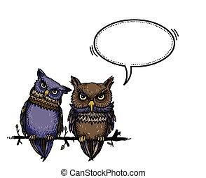 lindo, imagen, caricatura, owls-100