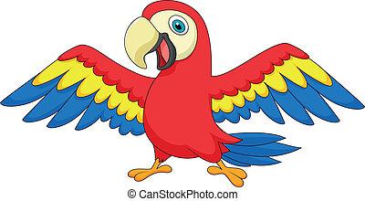 lindo, loro, pájaro, caricatura