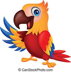 lindo, papagallo, pájaro, caricatura, ondulación