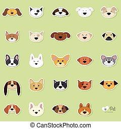 lindo, perros, cara