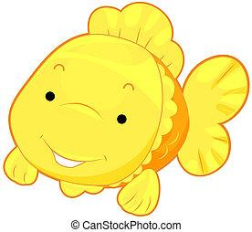 lindo, pez, oro