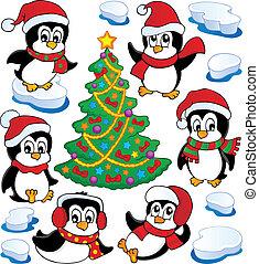 lindo, pingüinos, colección, 4