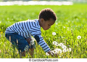 lindo, poco, al aire libre, gente, niño, -, norteamericano, negro, africano, juego