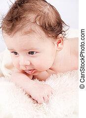 lindo, poco, manta, infante, bebé, retrato, blanco, pequeñín