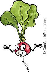 lindo, rábano, vegetal, caricatura, ilustración