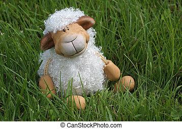lindo, sheep.