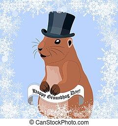 lindo, sombrero de invierno, marmota, saludo, fondo., negro, marmota, día, tarjeta