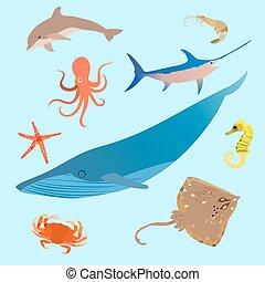 lindo, tiburón, animales, creatures., fish., simple, océano, vector, pulpo, mar, caricatura