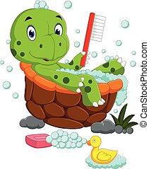 lindo, tortuga, el bañarse