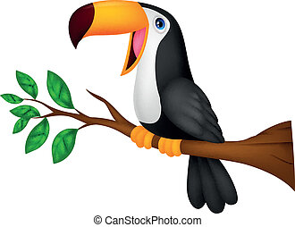 lindo, tucán, pájaro, caricatura