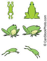 lindo, vector, rana, ilustración, variado