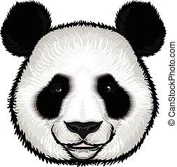 lindo, velloso, panda, cara