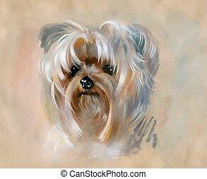 lindo, yorkshire, mano, dibujado, perro, terrier