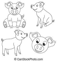 Line art black and white happy pig set. 2019 year chinese...