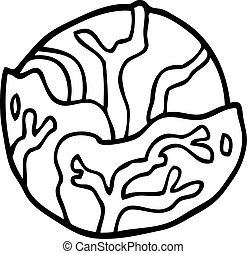 line drawing cartoon cabbage