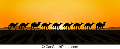 line of camles - line of camels in fron of burning sun in...