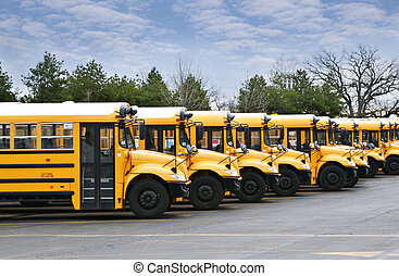 line of school buses - line of yellow school buses ready to...