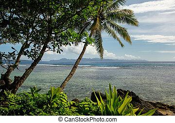linea costiera, in, lavena, villaggio, su, isola taveuni, figi