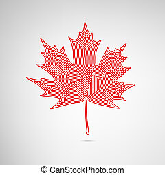 Lined Maple Leaf - Maple leaf in greative design. EPS10...