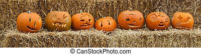 Lined up pumpkins