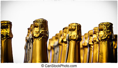 Lines of champagne bottles