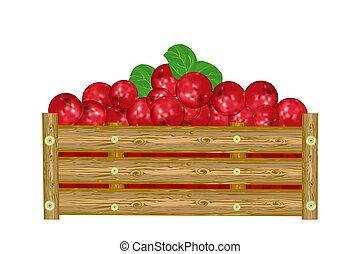 lingonberry, paka, tło., berries., boks, odizolowany, soczysty, biały