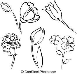 linha, flor, arte