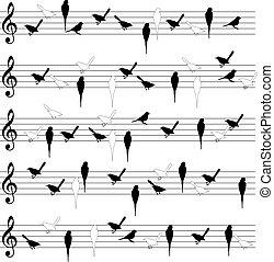 linhas, pássaro, notação