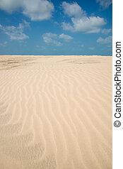 linien, sand, von, a, sandstrand