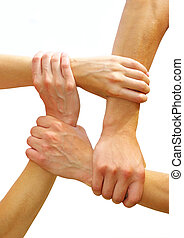 linked hands - Linked hands on a white background