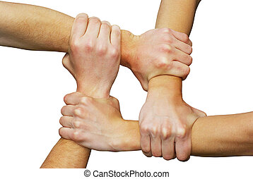 hands - Linked hands on a white background symbolizing...
