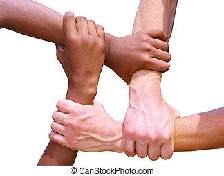 hands - Linked hands on a white background symbolizing...