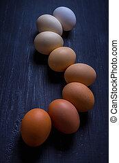 linkovaný, neobvyklý, up, degrade, vejce, barvy