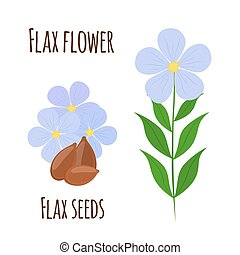 lino, flor, seeds., alimento vegetariano, natural, linen., caricatura, plano, style.