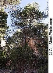 Lino's peak way. Los Ports mountains