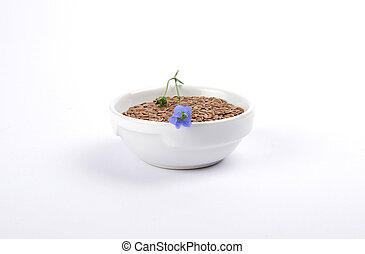 Linseed and common flax in bowl on white