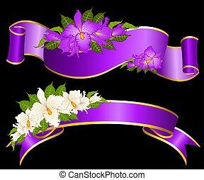 linten, met, mooi, orchids